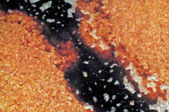 固体醗酵法